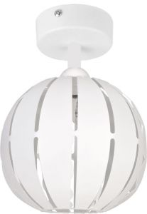 GLOBUS whiteS 31310 Sigma